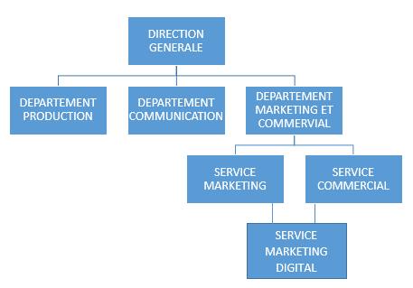 service webmarketing lié au département commercial et marketing